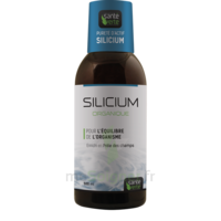 Santé Verte Silicium Solution buvable Fl/500ml à PARIS